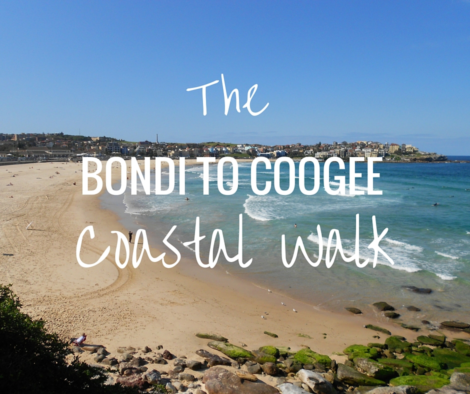 bondi to coogee coastal walk photo diary