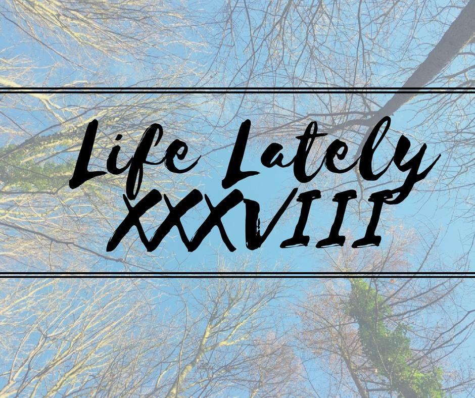 Life Lately XXXVIII