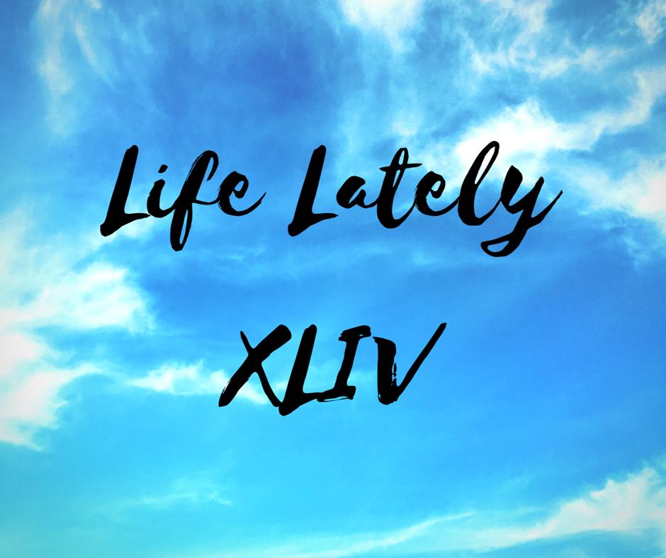 Life Lately XLIV