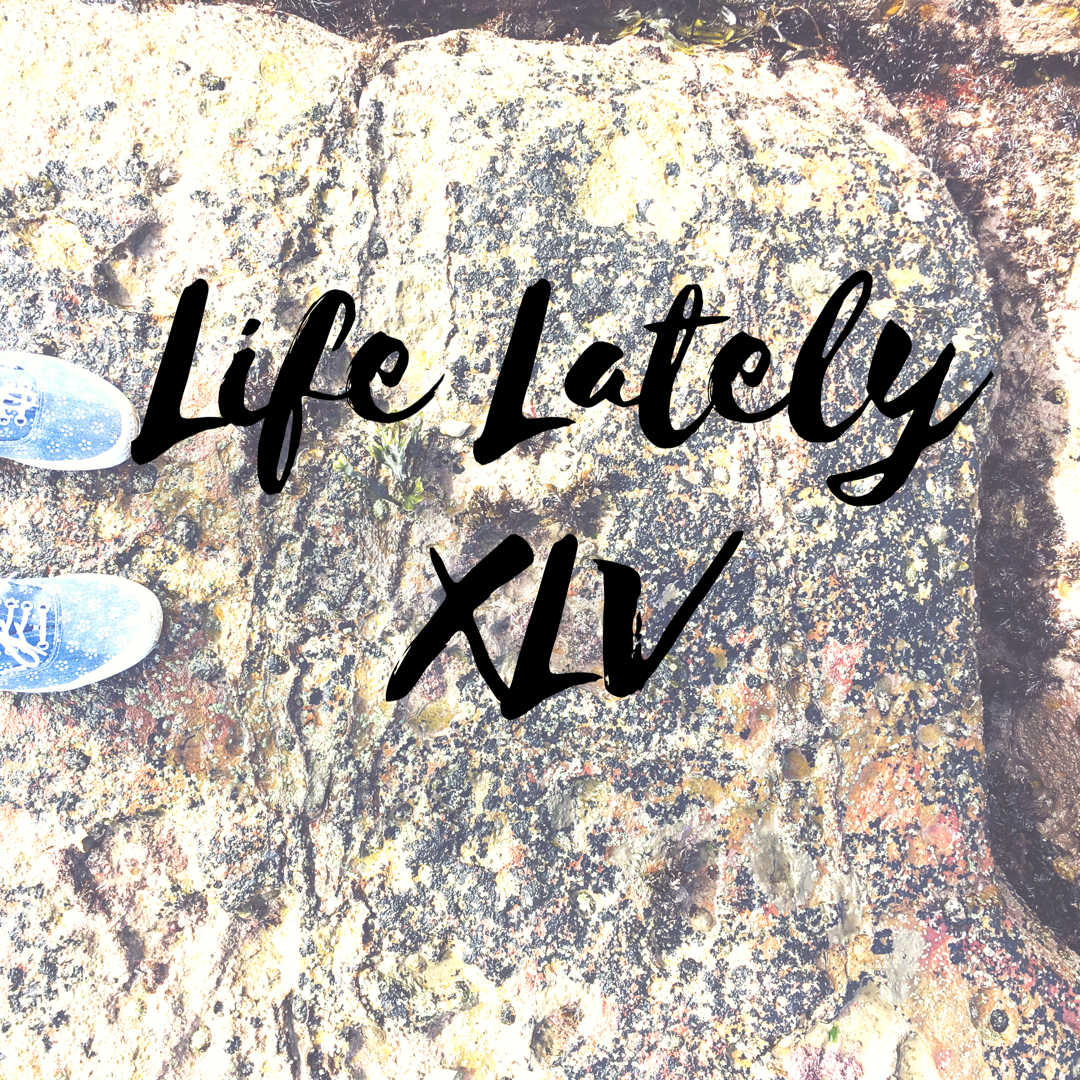Life Lately XLV