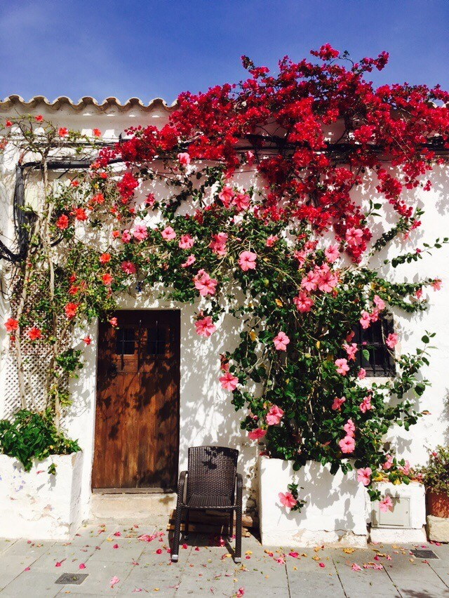 A White House with wooden door and pink flowers in Ibiza